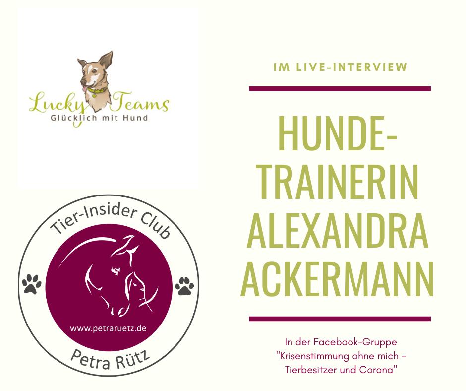 Interview mit Hundetrainerin Alexandra Ackermann