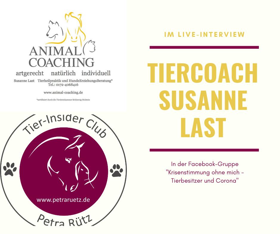 Interview mit Susanne Last – Animal Coaching